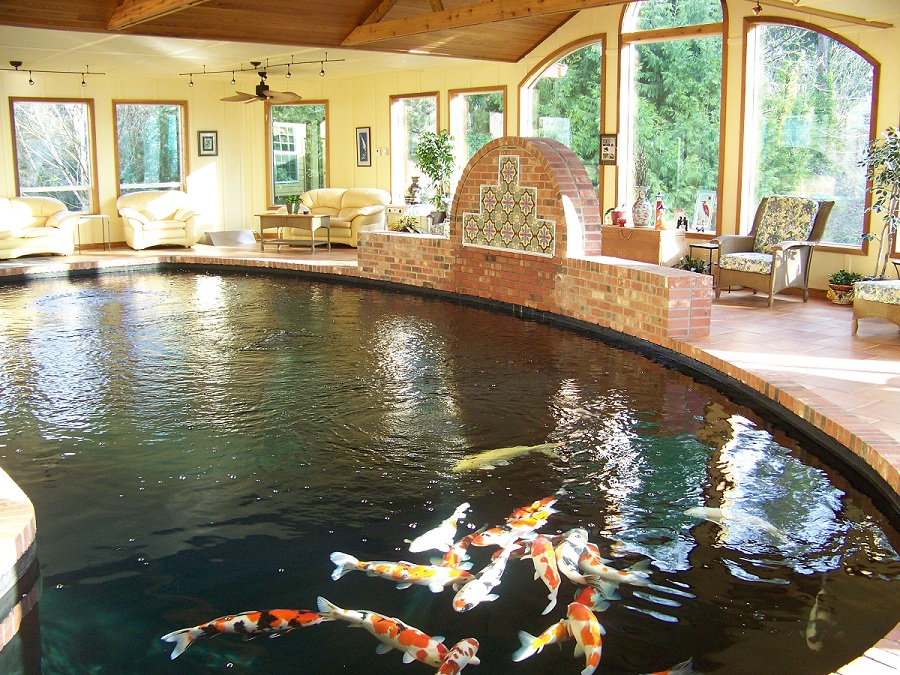Theresa talks real estate everything you need to know for Indoor koi pool